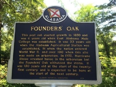 Founders' Oak Marker image. Click for full size.