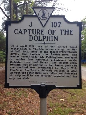 Capture of the Dolphin Marker image. Click for full size.