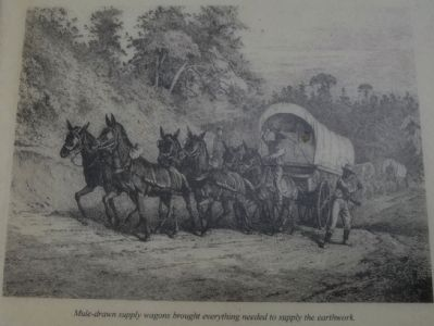 Mule-drawn supply wagons brought everything needed to supply the earthwork image. Click for full size.