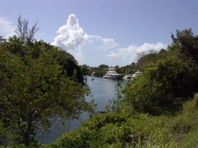 Coral Gables Waterway image. Click for full size.