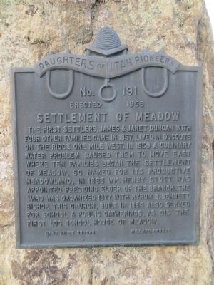Settlement of Meadow Marker image. Click for full size.
