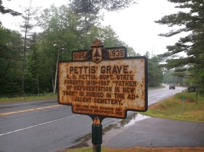 Pettis' Grave Marker image. Click for full size.