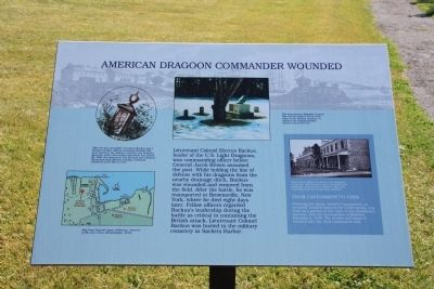 American Dragoon Commander Wounded Marker image. Click for full size.