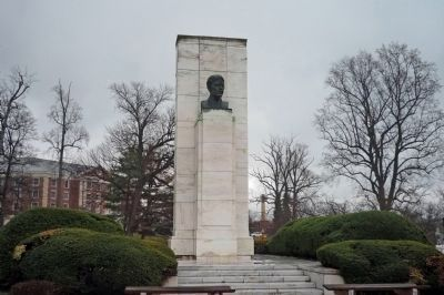The Walter Reed Bust image. Click for full size.