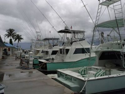 Haulover Beach charter boat fishing dock today image. Click for full size.