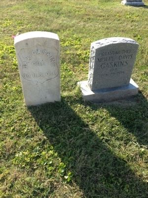 Grave of James Gaskins image. Click for full size.