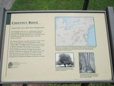 Chestnut Ridge Marker image. Click for full size.