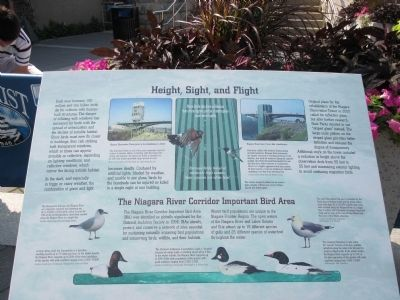 Height, Sight, and Flight / The Niagara River Corridor Important Bird Area Marker image. Click for full size.
