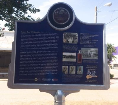 Turner's Drug Store Marker (Rear) image. Click for full size.
