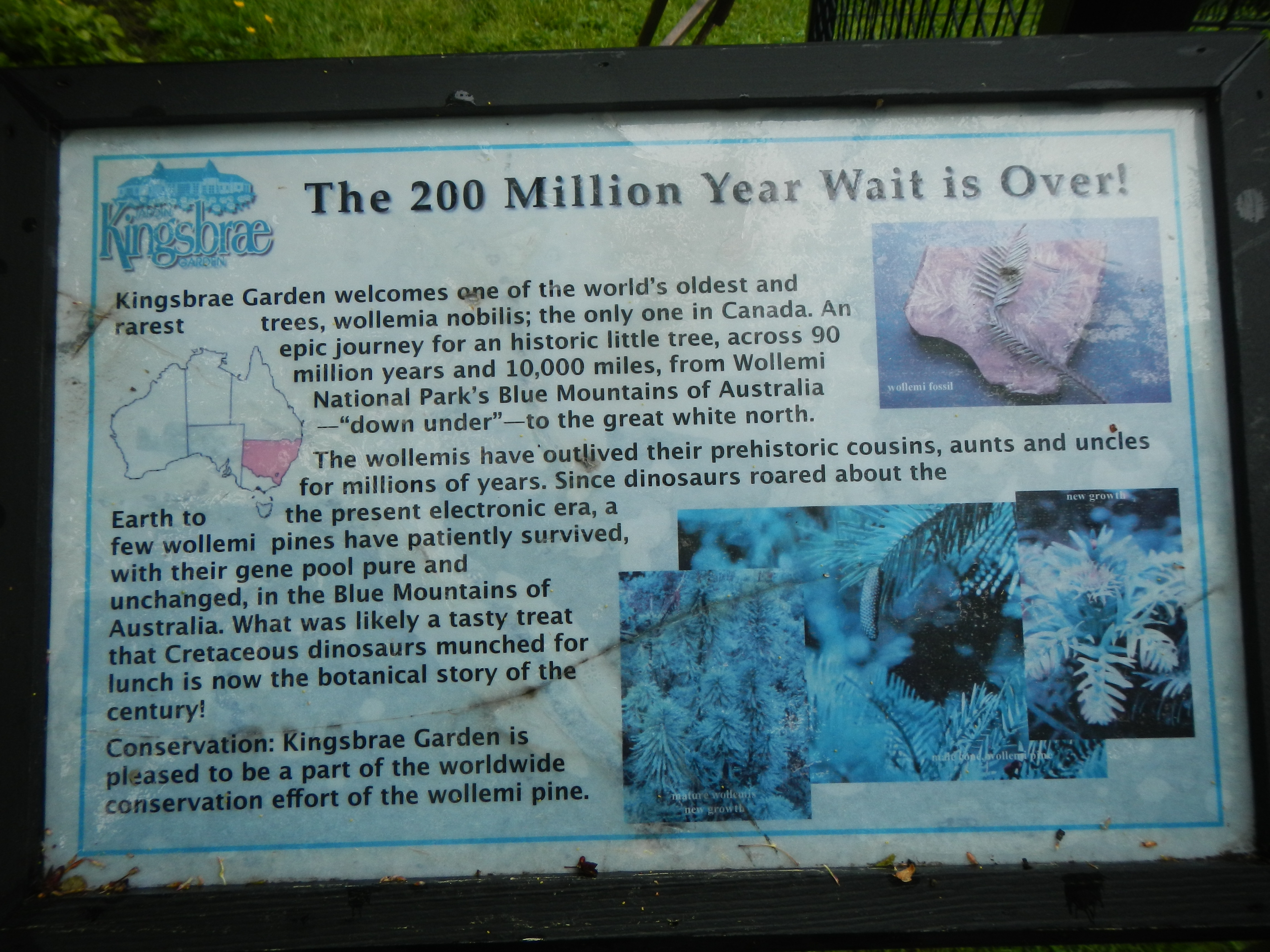 The 200 Million Year Wait is Over! Marker