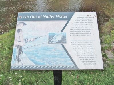 Fish Out of <i>Native</i> Water image. Click for full size.