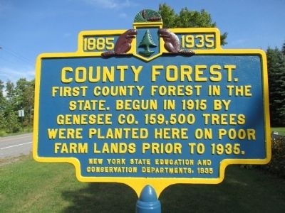 County Forest Marker image. Click for full size.
