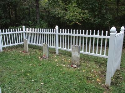 Poor House Cemetery image. Click for full size.