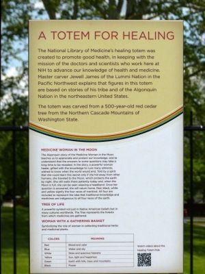 A Totem For Healing Marker image. Click for full size.
