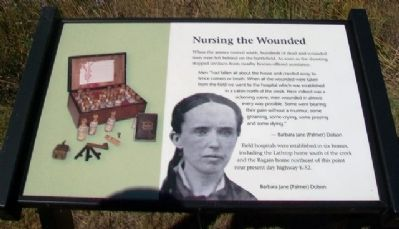 Nursing the Wounded Marker image. Click for full size.