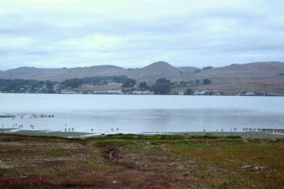 The Town of Bodega Bay and Harbor image. Click for full size.