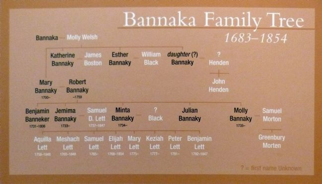 Bannaka Family Tree<br>1683-1854 image. Click for full size.