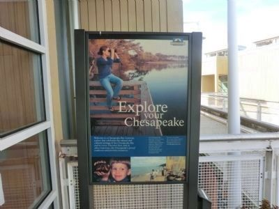 Explore the Chesapeake-Marker at the entrance to the Dorchester County Visitor Center image. Click for full size.
