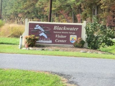 Entrance sign to the Blackwater National Wildlife Refuge image. Click for full size.