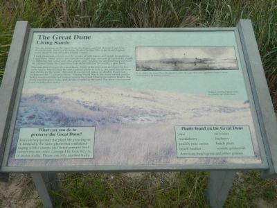 The Great Dune Marker image. Click for full size.