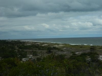 View of Delaware Bay from the Great Dune. image. Click for full size.