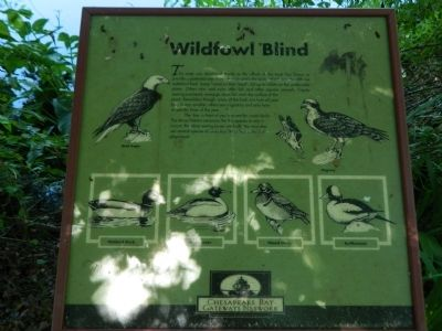 Wildfowl Blind Marker image. Click for full size.
