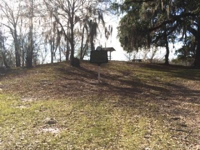 Nicolls' Outpost was atop this Indian mound image. Click for full size.