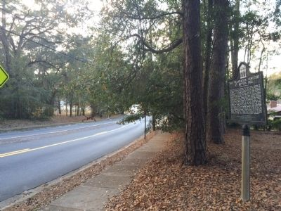 Looking towards Thomasville Road to the west. image. Click for full size.