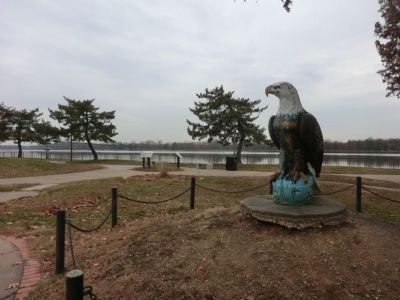 Eagle at the Burlington River Front Park image. Click for full size.