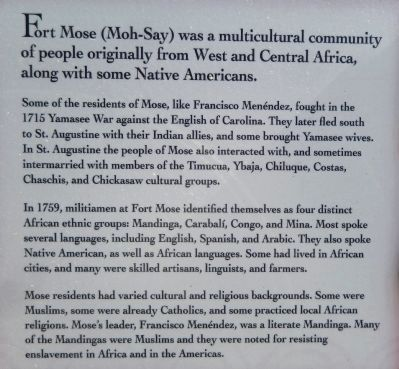 African Origins Marker (<i>center detail view</i>) image. Click for full size.
