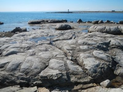 Thrombolites image. Click for full size.