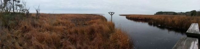 Currituck Sound image. Click for full size.