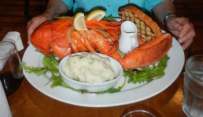 Lobster in Nova Scotia image. Click for full size.