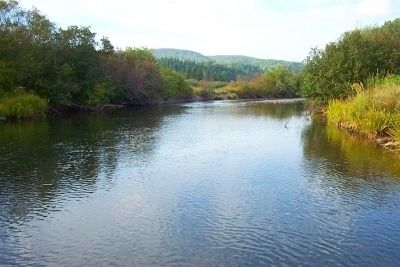 The Margaree River image. Click for full size.