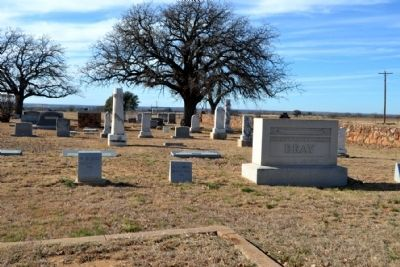 Grave Site of Moran Pioneer M.D. Bray image. Click for full size.