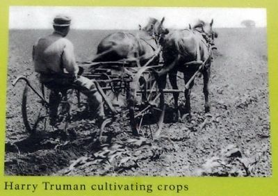 Harry Truman Cultivating Crops image. Click for full size.