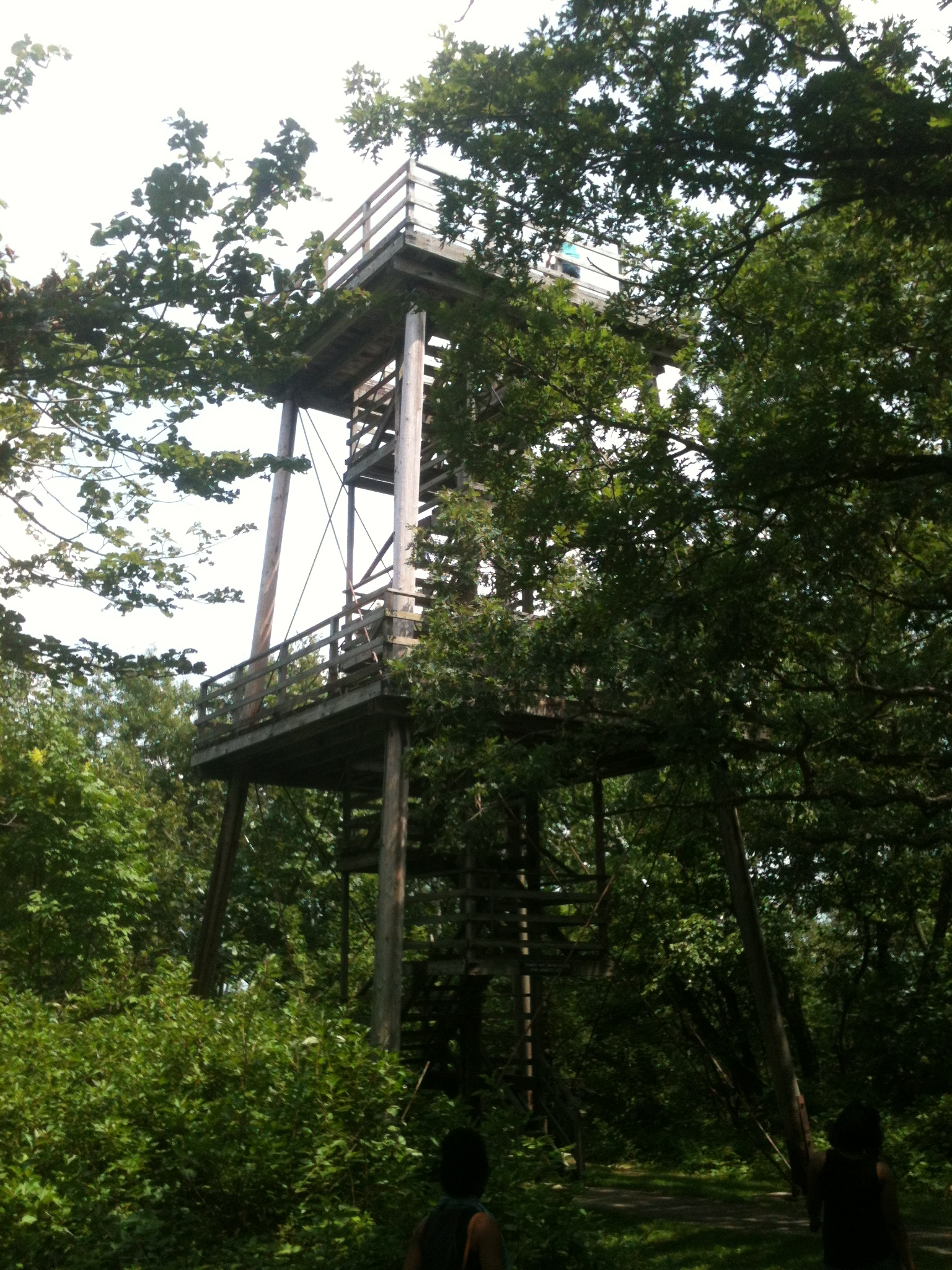 Nearby Observation Tower