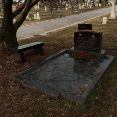 Wide view of Leonard Matlovich grave image. Click for full size.