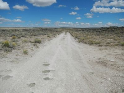 The Oregon-California Trail looking west from South Pass. image. Click for full size.