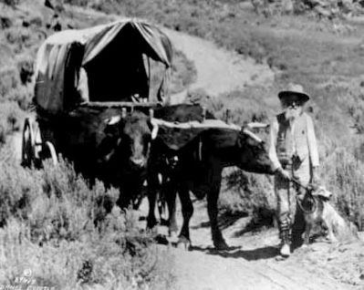 Erza Meeker on the Oregon Trail image. Click for full size.