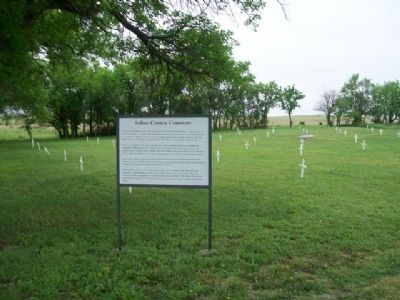Saline County Cemetery and Marker image. Click for full size.