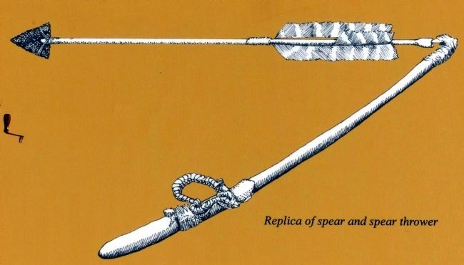 Replica of spear and spear thrower image. Click for full size.