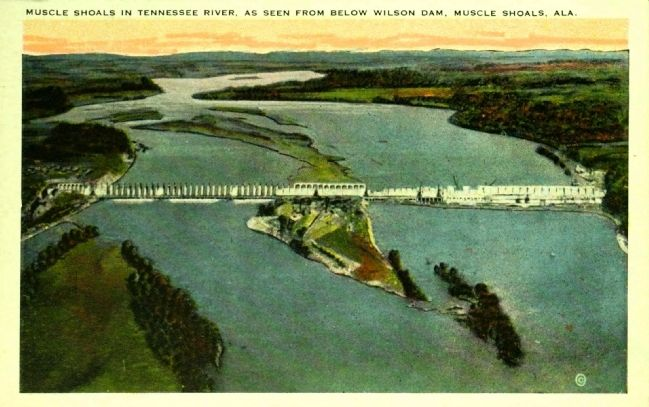 <i>Muscle Shoals in Tennessee River, as Seen from Below Wilson Dam, Muscle Shoals, Ala.</i> image. Click for full size.