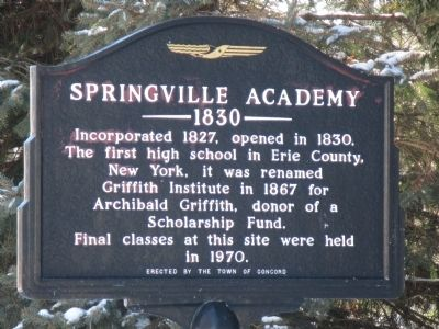 Springville Academy Marker image. Click for full size.