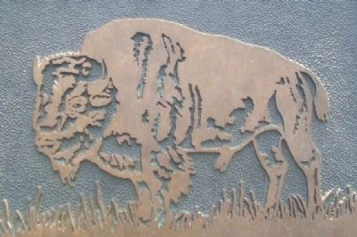 Bison on The Tallgrass Prairie Marker image. Click for full size.