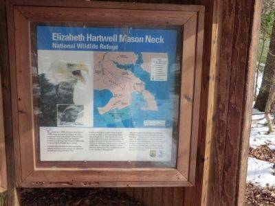 Elizabeth Hartwell Mason Neck Wildlife Refuge-kiosk panel image. Click for full size.