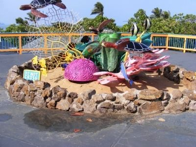 Sea Life Park image. Click for full size.