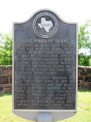 Lost Pines of Texas Marker image. Click for full size.
