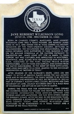 Jane Herbert Wilkinson Long Marker image. Click for full size.