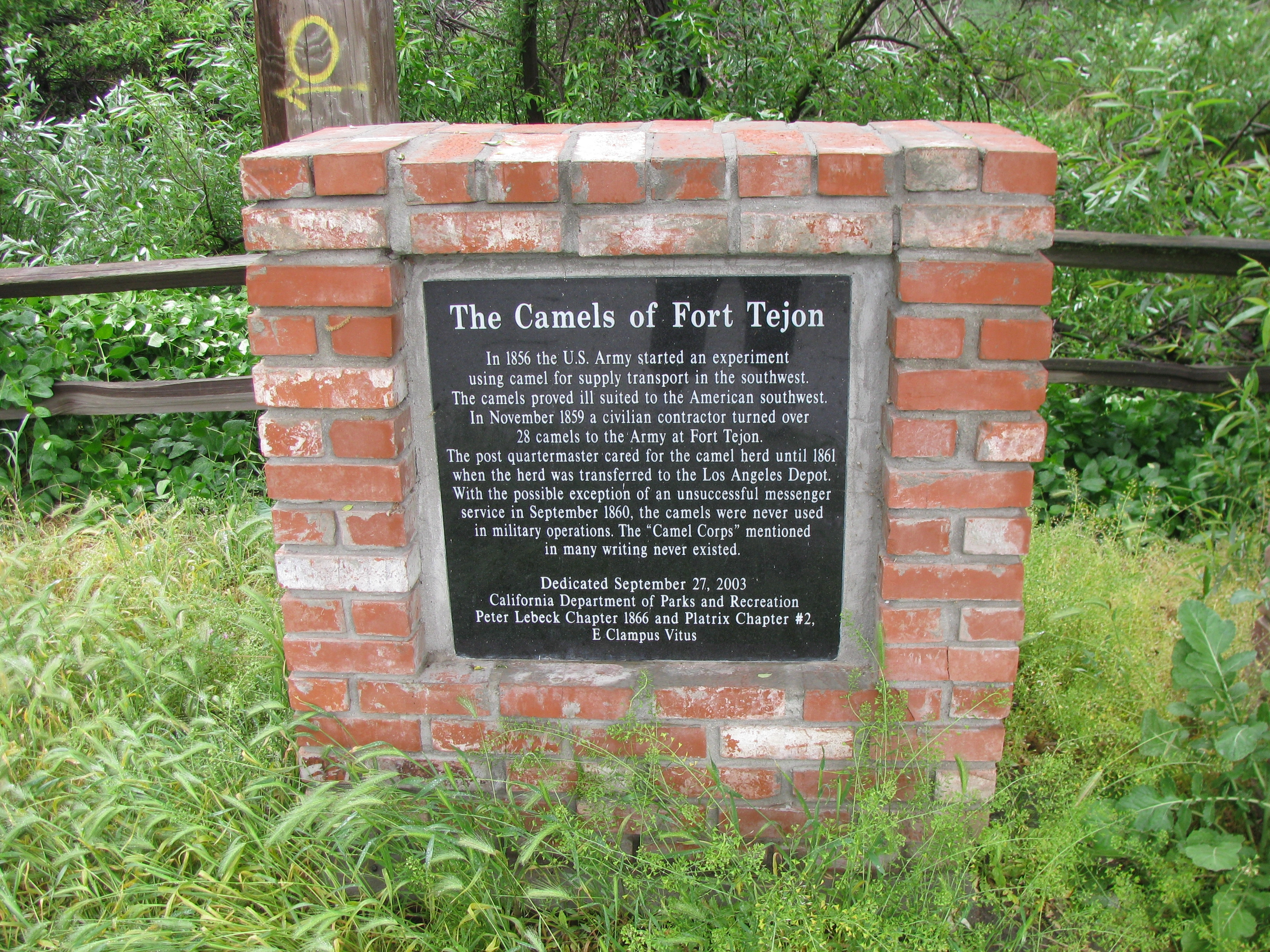 The Camels of Fort Tejon Marker